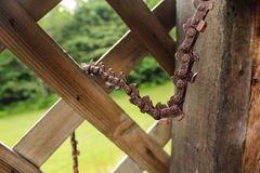 Rusty Chainsaw Chain Hanging Stock Afbeelding