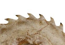 Rusty circular saw disk teeth closeup on white Stock Image