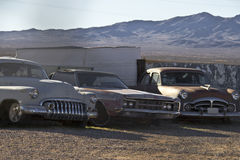 Rusty classic cars in the desert Royalty Free Stock Image