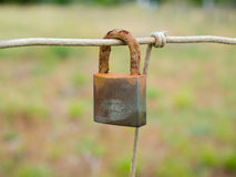 Rusty closed padlock hanging from a wire mesh fence Stock Photography