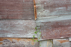 A rusty corrugated iron Stock Photography