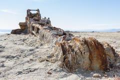 Rusty crane in the Salton sea Royalty Free Stock Photos