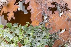 Rusty decoration detail. Decoration detail including a fragmented rusty bowl and ivy plant Royalty Free Stock Photos