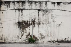 Rusty dirty moldy wall outdoor. In Penang, Malaysia Royalty Free Stock Images