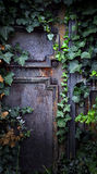 Rusty door. Old, rusty door overgrown with amber Stock Photos