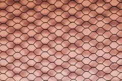 Rusty Double Layer Hexagonal Wire Mesh Background fotografering för bildbyråer