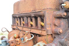 Rusty engine. A rusty old ruined engine Royalty Free Stock Photography