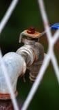 Rusty faucet Royalty Free Stock Photos
