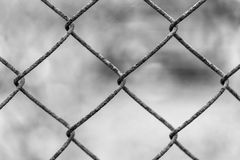 Rusty fence Rabitz. Beautiful netting mesh pattern on a blurred background. Rust Royalty Free Stock Photography