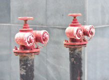 Rusty fire hydrant Stock Images