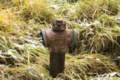 Rusty Fire Hydrant Winter Stock Photography