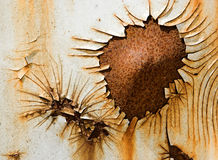 Rusty flower. Flower-shaped rust on the side of a steel container Royalty Free Stock Image