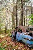 Rusty Foliage 2 Royalty Free Stock Photography