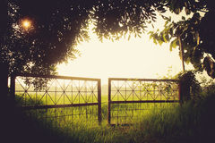 Rusty Gate in fog. The Rusty gate in grass field Stock Photography