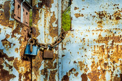 Rusty gate with locks Royalty Free Stock Image
