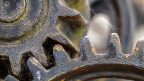 Rusty gears. Rusty old gears with cobweb Stock Photography