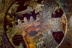 Rusty gears. Rusty and old watch gears close up royalty free stock photography