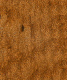 Rusty Grungy Metal Background Stock Image