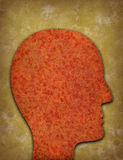 Rusty head silhouette against yellowed background Stock Image