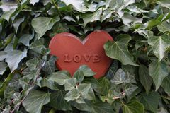 A rusty heart in the ivy stock image