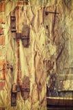 Rusty hinge on old wooden door. Stock Images