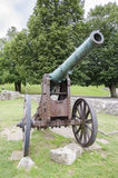 Rusty historic cannon. On meadow Stock Images