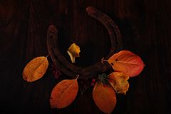 Rusty Horseshoe and Autumn Leaves. Closeup shot of one single rusty horseshoe and autumn color leaves and red berries. High angle view. Low key horizontal photo Stock Image