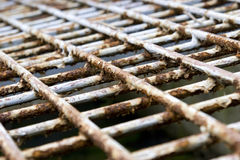 Rusty  iron. Background of cage cover Stock Image