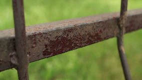 Rusty iron fence close-up on blurred background. stock video