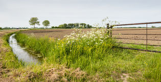 Rusty iron gate in front of a plowed field Stock Image