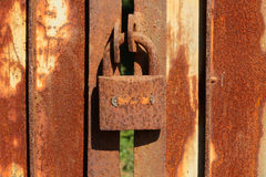 Rusty Iron gate with lock Stock Photography