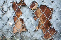 Rusty iron screen background Royalty Free Stock Image
