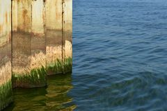 The rusty iron wall with green moss goes into the water and is reflected. stock photo