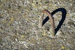Rusty Klipp für alte Betonplatten mit Moos, Hintergrund im Freien Stockfotos