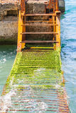 A rusty ladder in the water Stock Photography