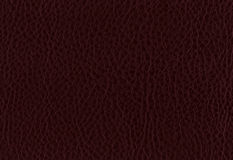 Rusty Leather Royalty Free Stock Image