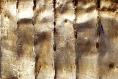 Rusty Metal Lizenzfreie Stockbilder