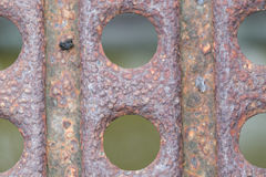 Rusty metal. Stock Image