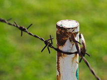Rusty metal barbed wires on metal pole Royalty Free Stock Image