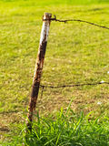 Rusty metal barbed wires on metal pole Stock Images