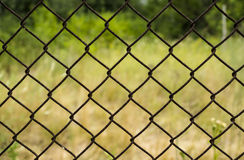 Rusty metal grille fence macro and nature Stock Photo