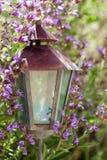 Rusty metal lantern in the garden between sage plant bloom Royalty Free Stock Photos