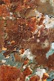 Rusty Metal Plate Royaltyfri Fotografi