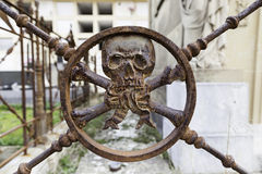 Rusty metal skull in a cemetery Royalty Free Stock Photo