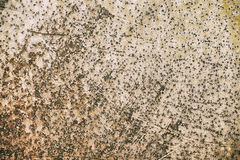 Rusty metal surface abstract Royalty Free Stock Photos