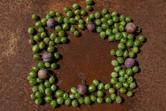 Rusty metal surface background with some fresh gooseberry and plums. Empty space stock photography