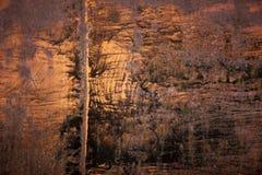 Rusty Metal Texure lizenzfreies stockfoto