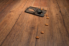 Rusty mousetrap Stock Images