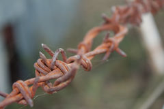 Rusty Multi Barbed Wire Fence con el fondo gris y verde borroso Fotos de archivo