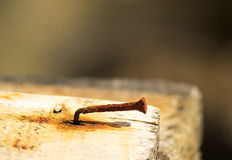 Rusty nail. Rusty bent nail on a wooden board with a limited depyh of field royalty free stock photography